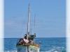 fishloc3matin27-04-13michaelrard-054